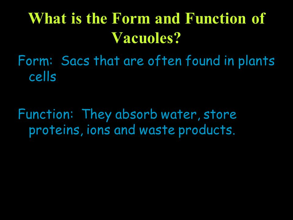 What is the Form and Function of Vacuoles