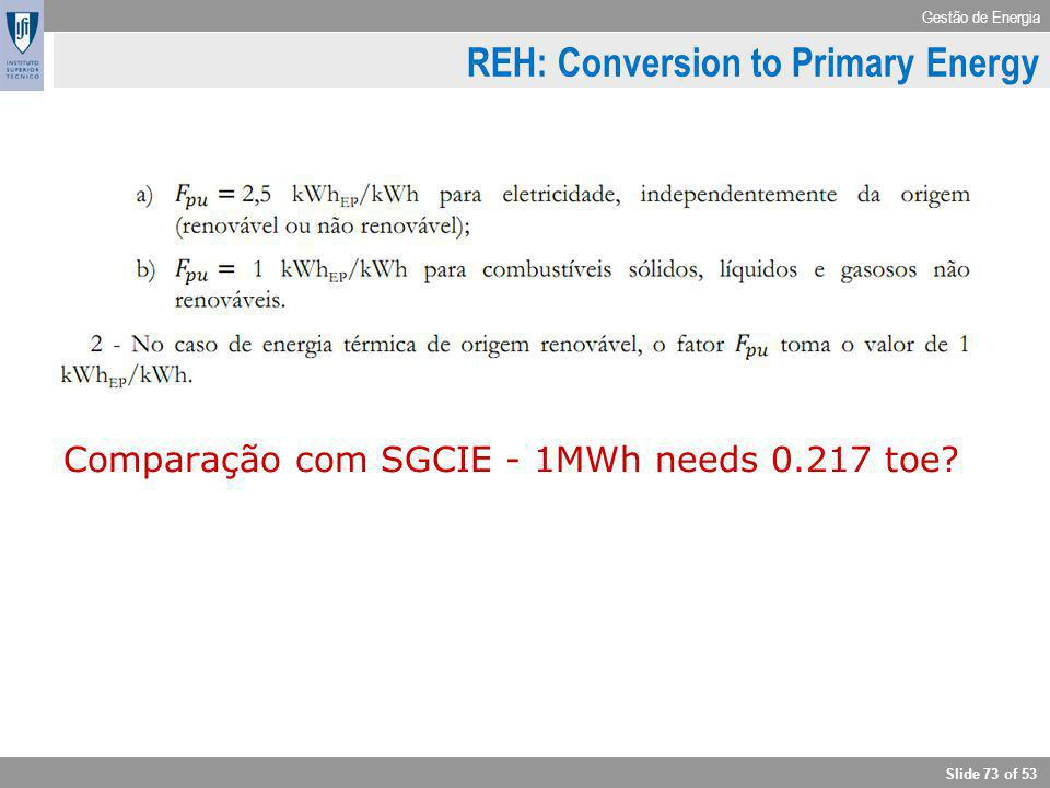REH: Conversion to Primary Energy
