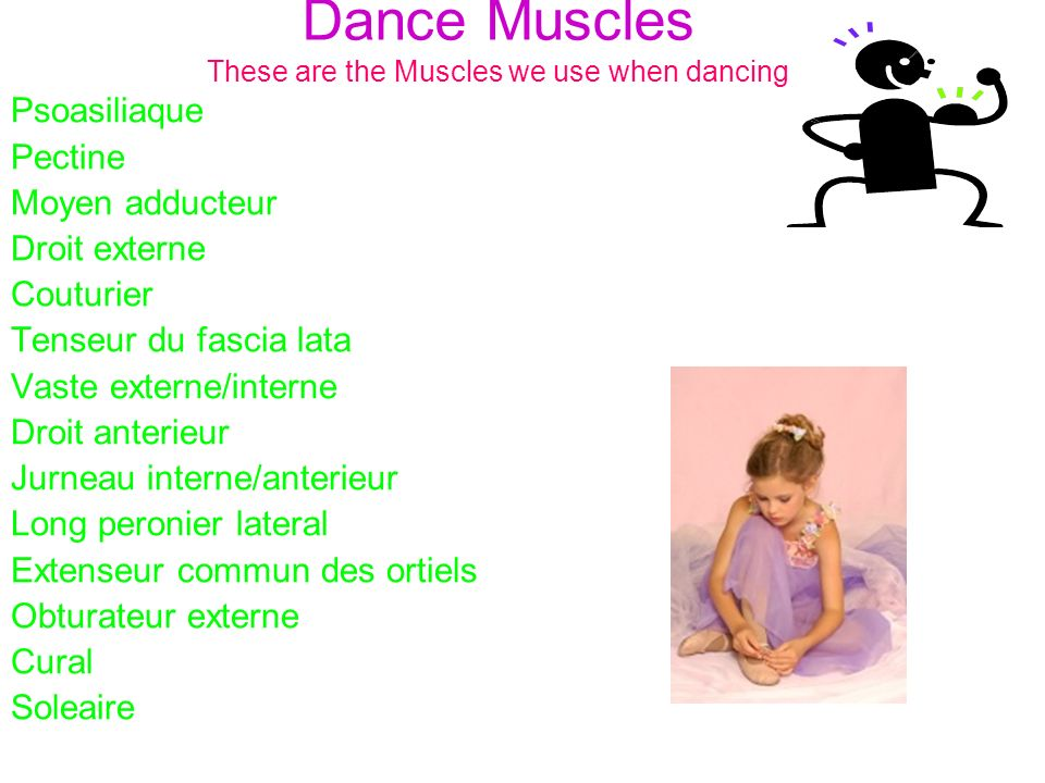 Dance Muscles These are the Muscles we use when dancing