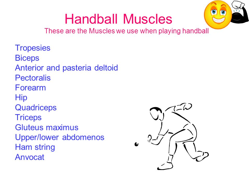 Handball Muscles These are the Muscles we use when playing handball