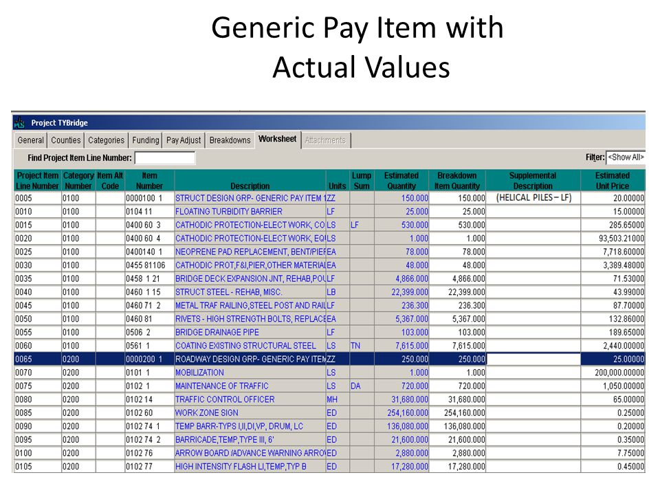 Generic Pay Item with Actual Values
