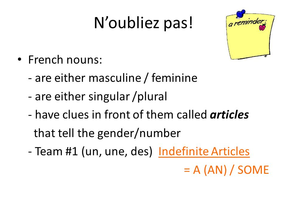 N'oubliez pas! French nouns: - are either masculine / feminine