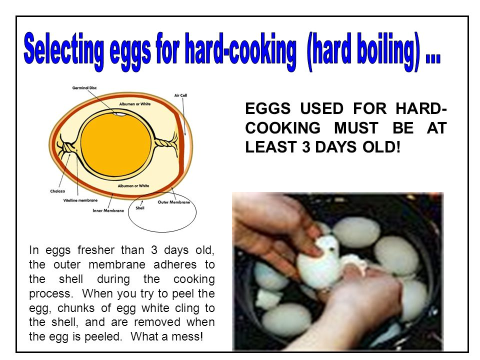 Selecting eggs for hard-cooking (hard boiling) ...