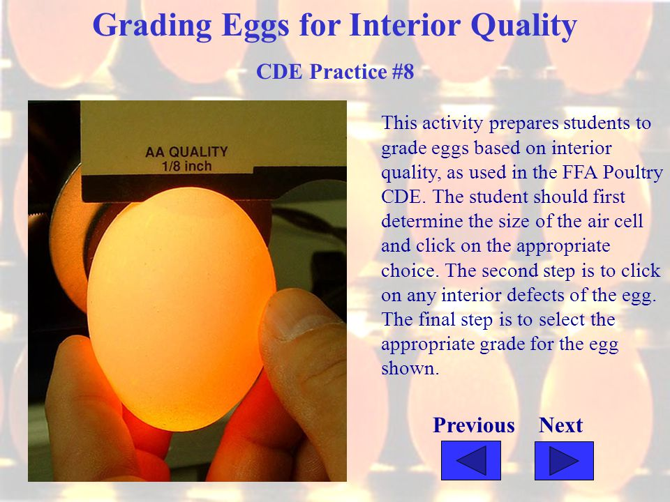 Grading Eggs for Interior Quality