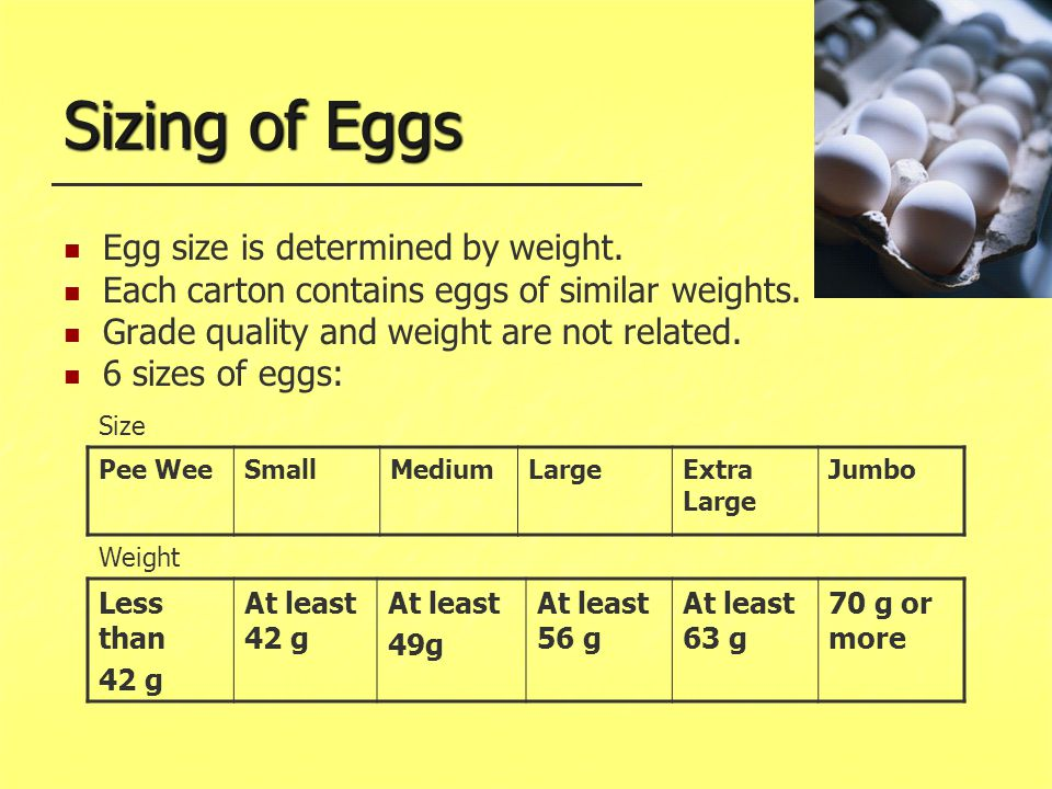Sizing of Eggs Egg size is determined by weight.