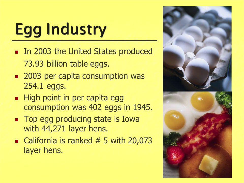 Egg Industry In 2003 the United States produced 73.93 billion table eggs.