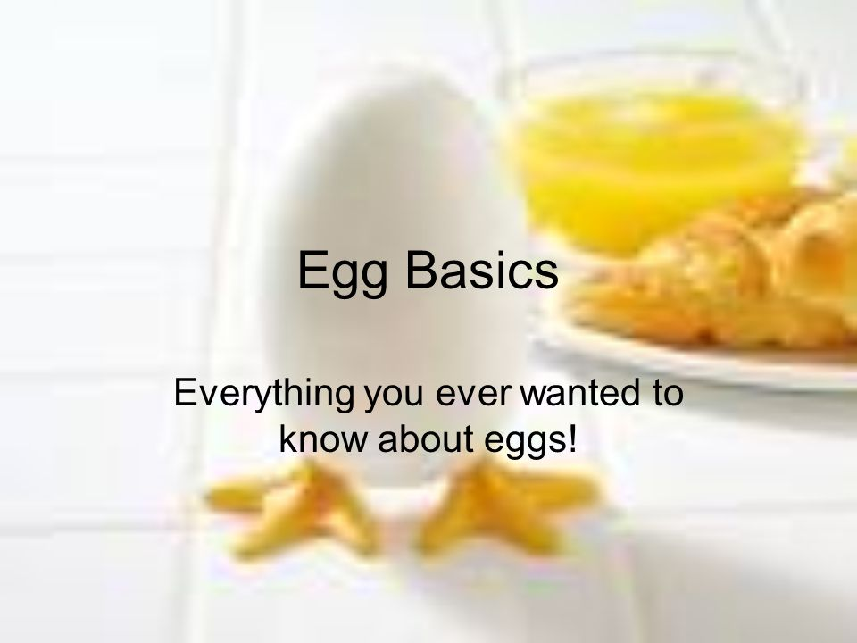 Everything you ever wanted to know about eggs!