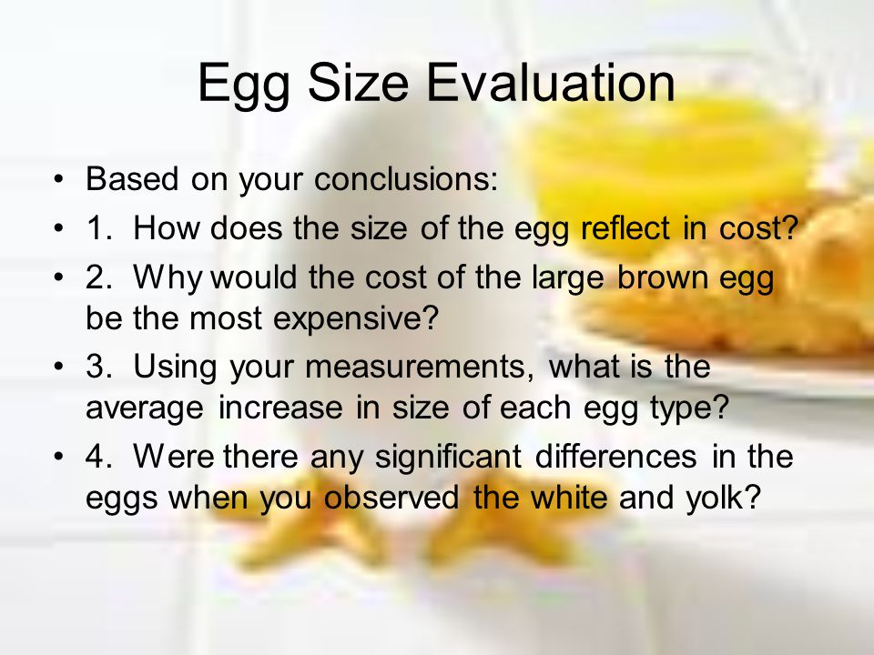 Egg Size Evaluation Based on your conclusions: