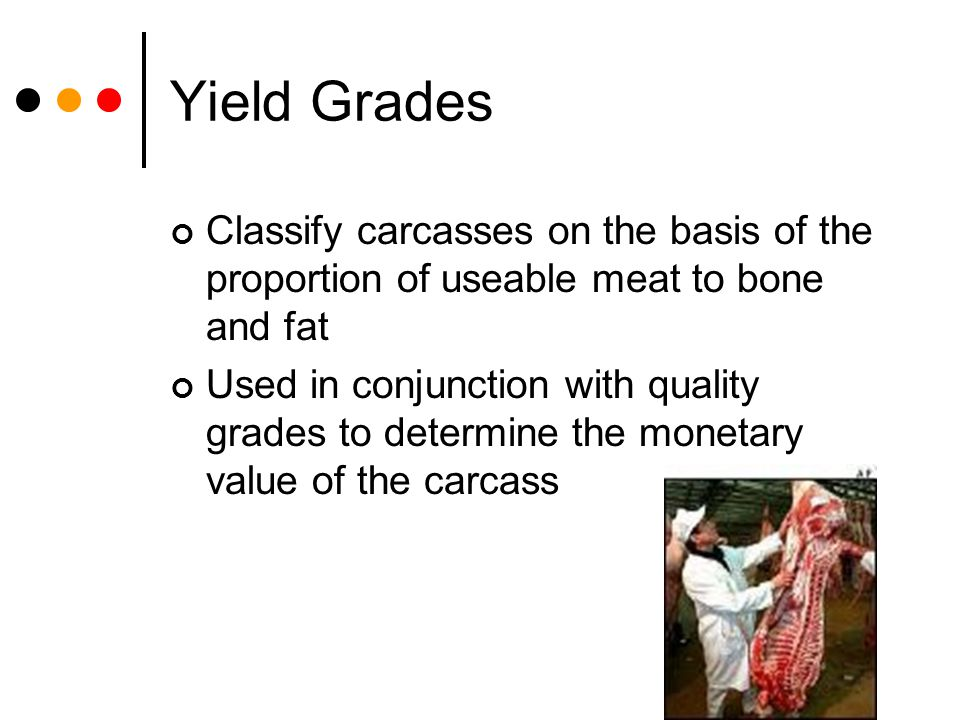 Yield Grades Classify carcasses on the basis of the proportion of useable meat to bone and fat.