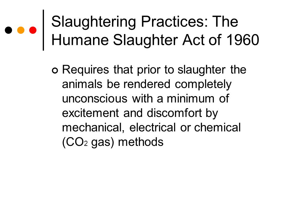 Slaughtering Practices: The Humane Slaughter Act of 1960