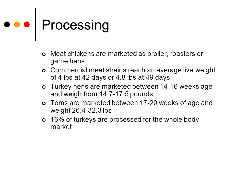Processing Meat chickens are marketed as broiler, roasters or game hens.