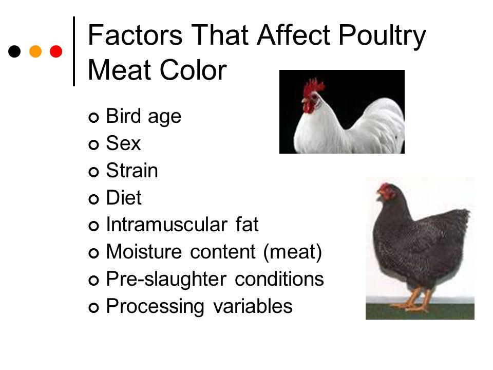 Factors That Affect Poultry Meat Color