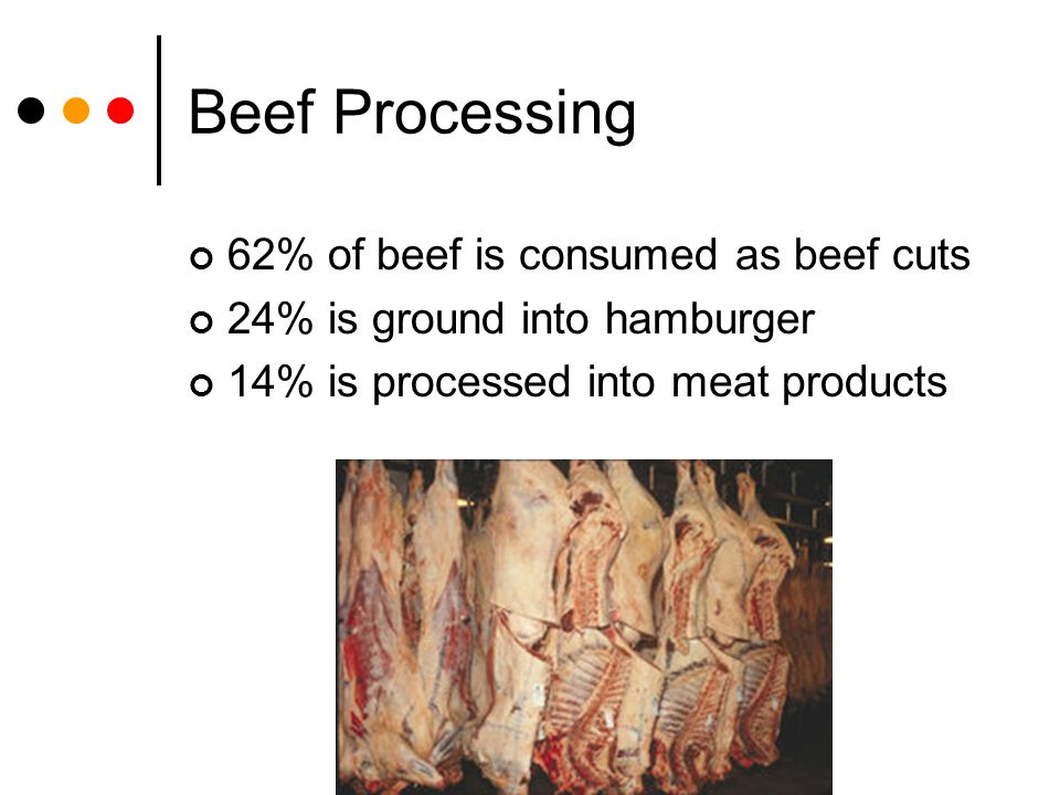 Beef Processing 62% of beef is consumed as beef cuts