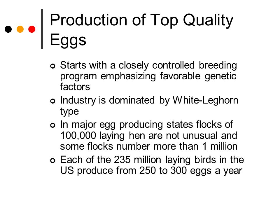 Production of Top Quality Eggs