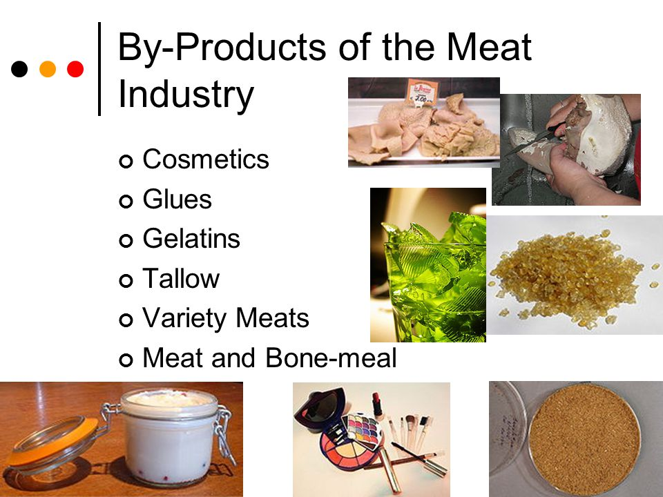By-Products of the Meat Industry