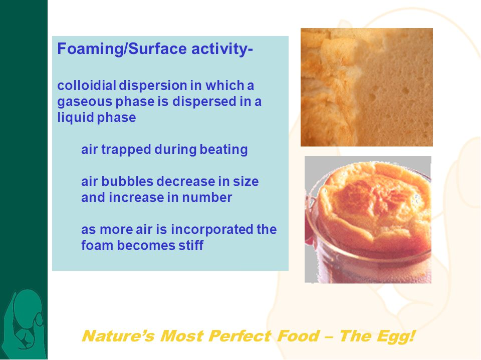 Foaming/Surface activity-