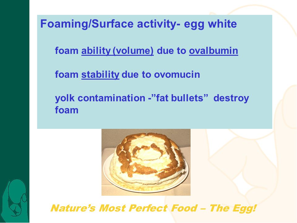Foaming/Surface activity- egg white