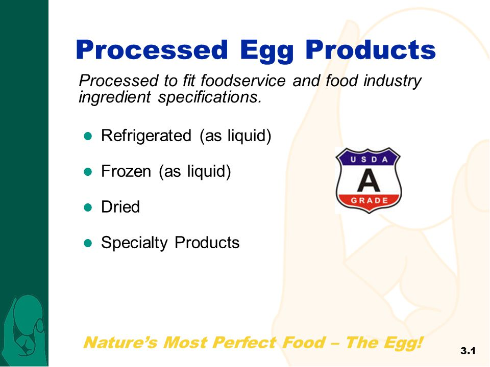 Processed Egg Products