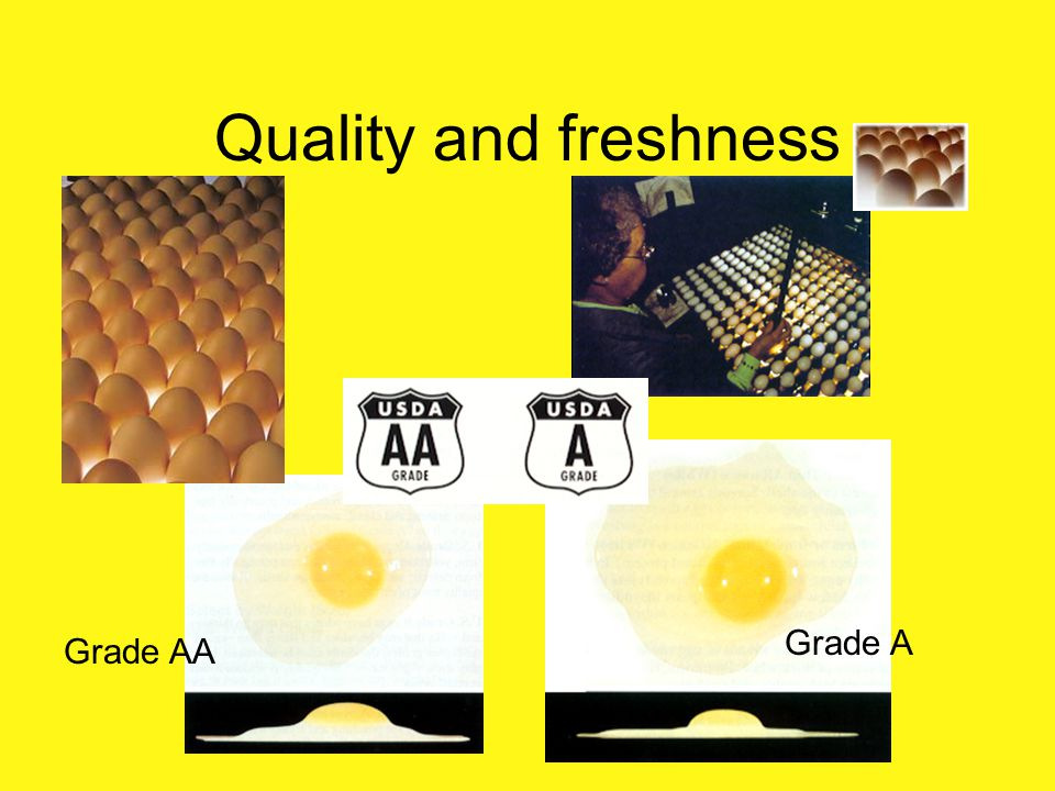 Quality and freshness Grade A Grade AA Select by U.S. Grade (Quality)