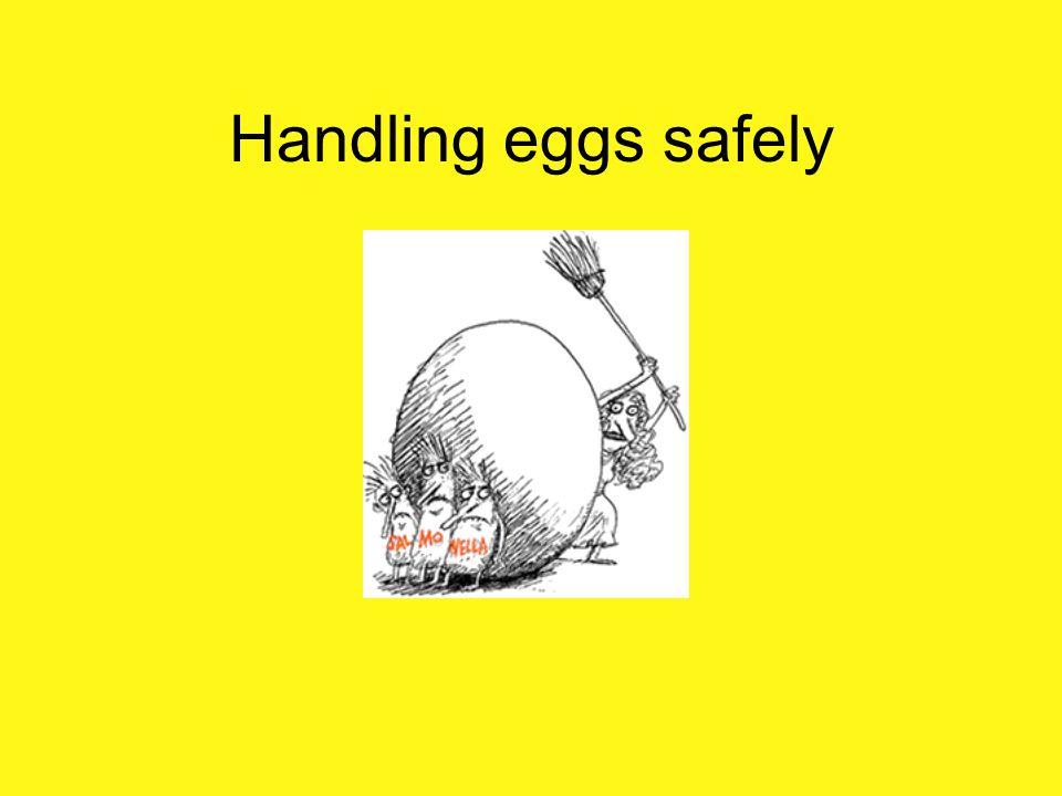 Handling eggs safely Safe Handling