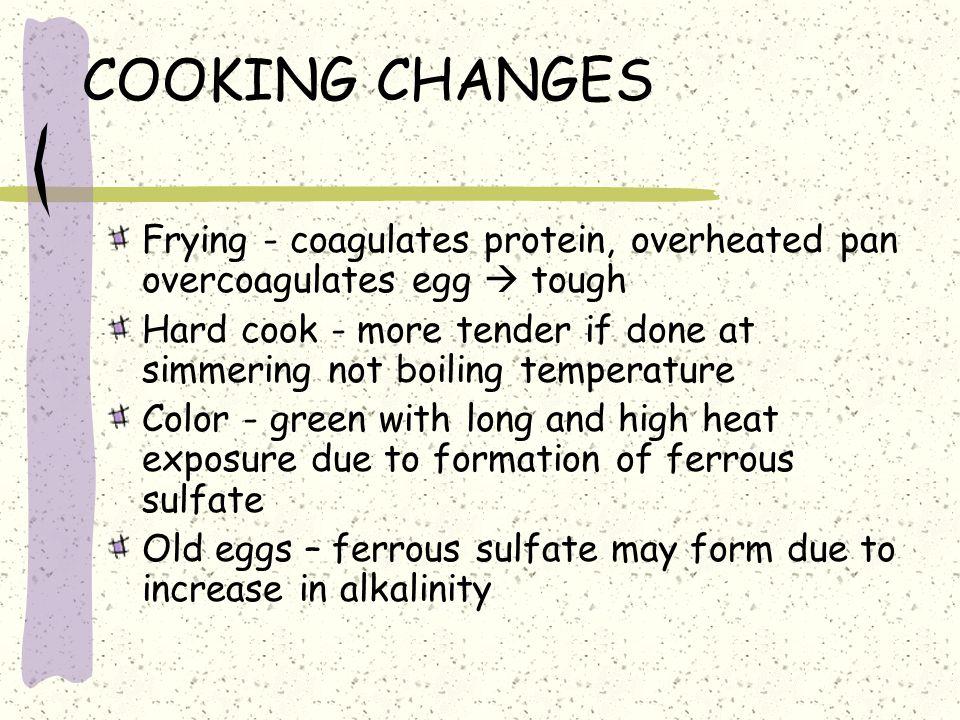 COOKING CHANGES Frying - coagulates protein, overheated pan overcoagulates egg  tough.