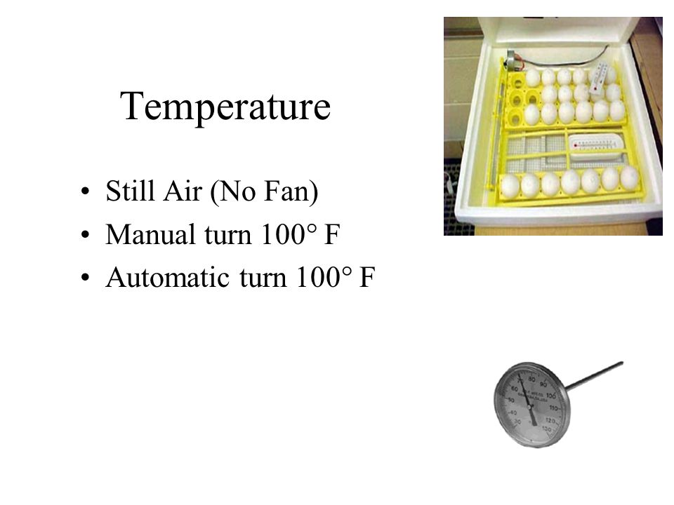 Temperature Still Air (No Fan) Manual turn 100° F