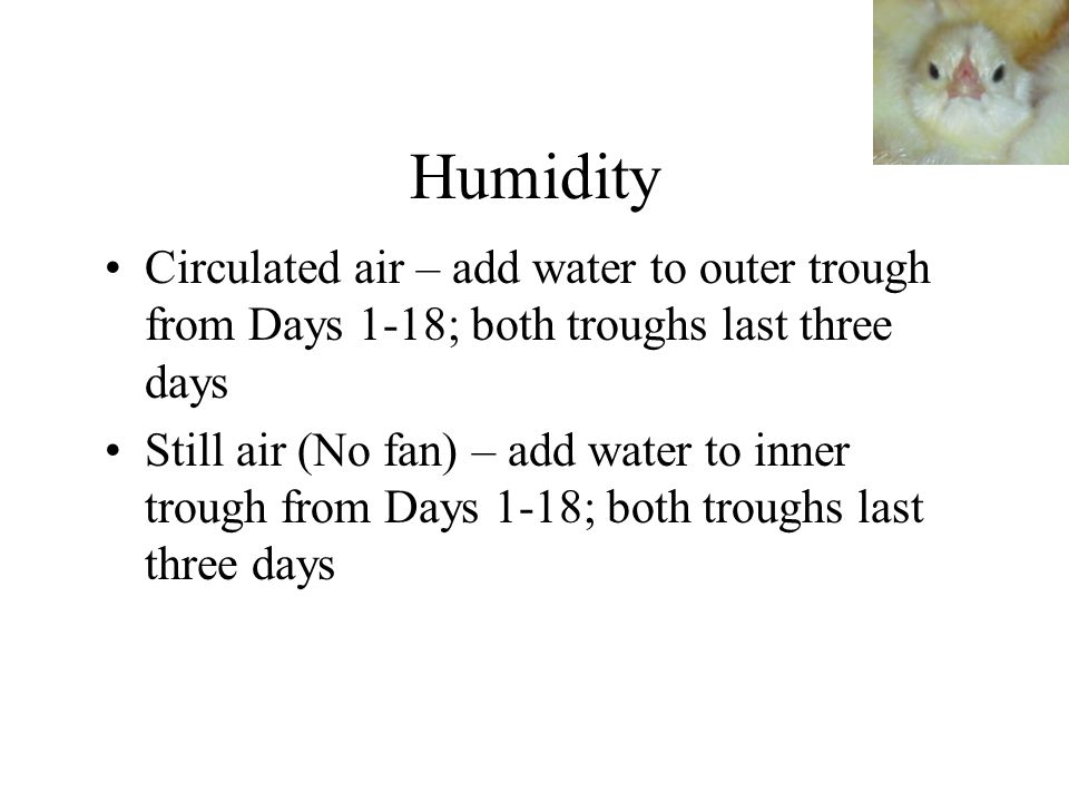 Humidity Circulated air – add water to outer trough from Days 1-18; both troughs last three days.