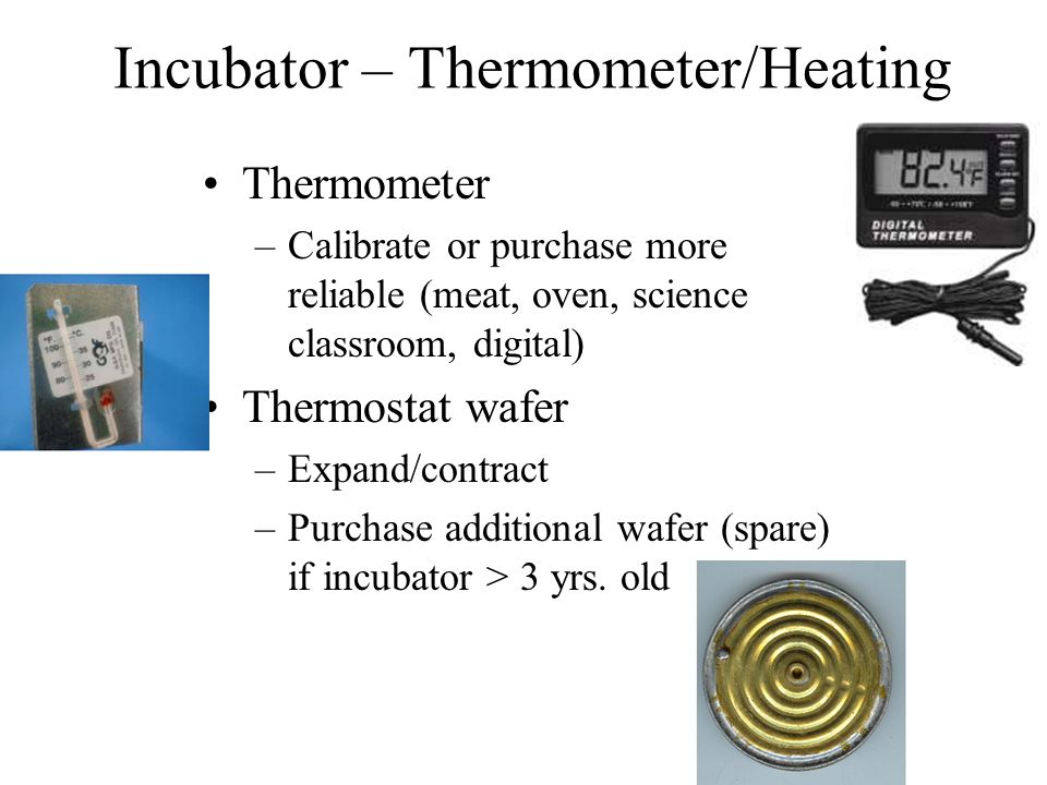 Incubator – Thermometer/Heating