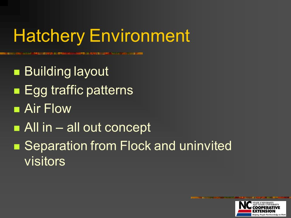 Hatchery Environment Building layout Egg traffic patterns Air Flow