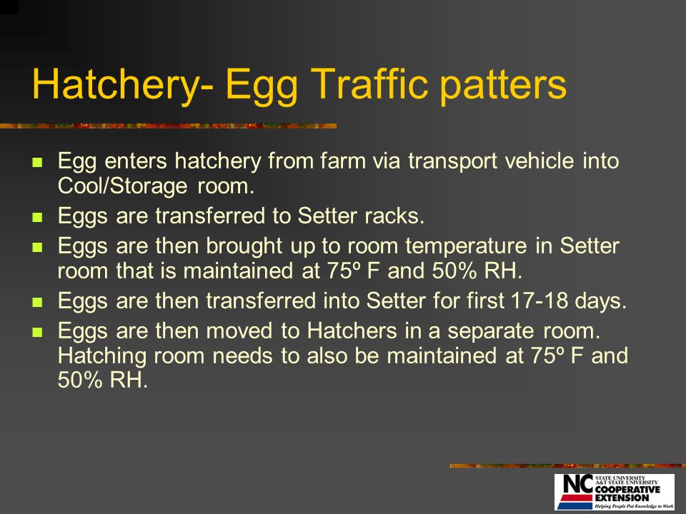 Hatchery- Egg Traffic patters