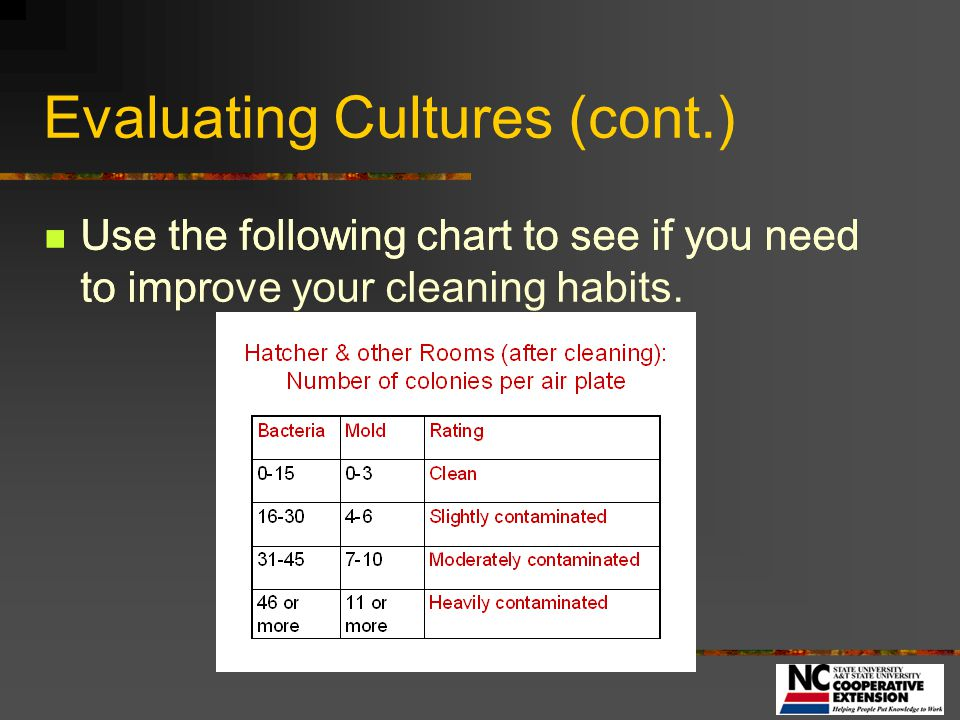 Evaluating Cultures (cont.)