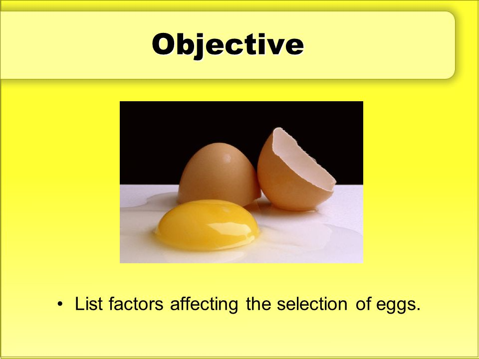 Objective List factors affecting the selection of eggs.
