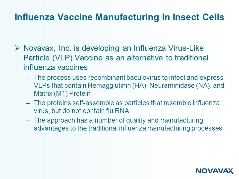 Influenza Vaccine Manufacturing in Insect Cells