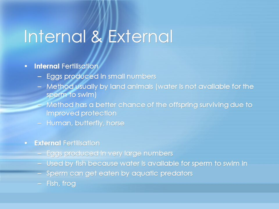 Internal & External Internal Fertilisation