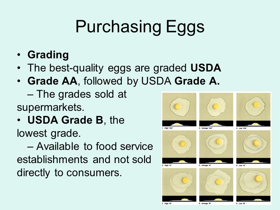 Purchasing Eggs Grading The best-quality eggs are graded USDA