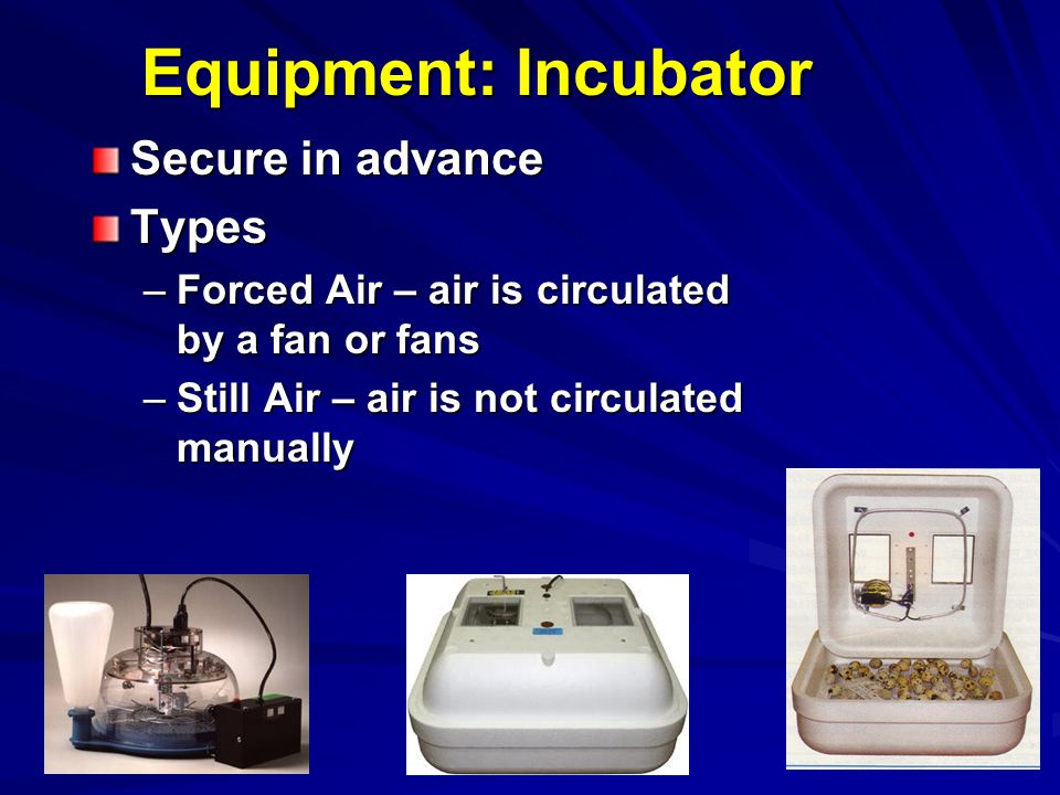 Equipment: Incubator Secure in advance Types