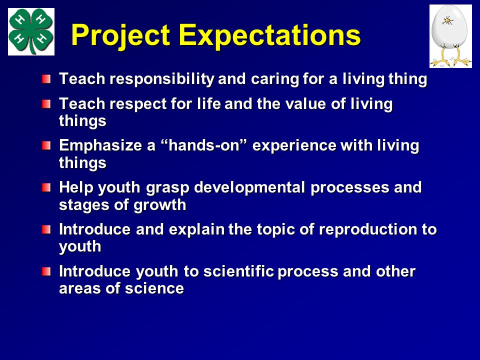 Project Expectations Teach responsibility and caring for a living thing. Teach respect for life and the value of living things.