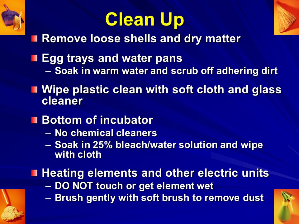 Clean Up Remove loose shells and dry matter Egg trays and water pans