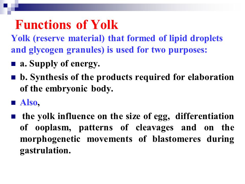 Functions of Yolk Yolk (reserve material) that formed of lipid droplets and glycogen granules) is used for two purposes: