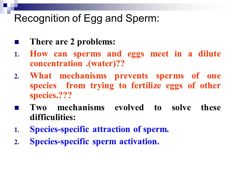 Recognition of Egg and Sperm: