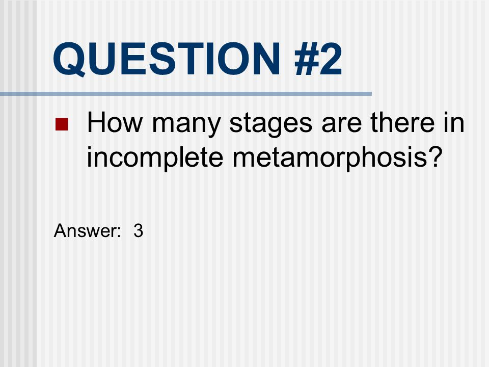 QUESTION #2 How many stages are there in incomplete metamorphosis