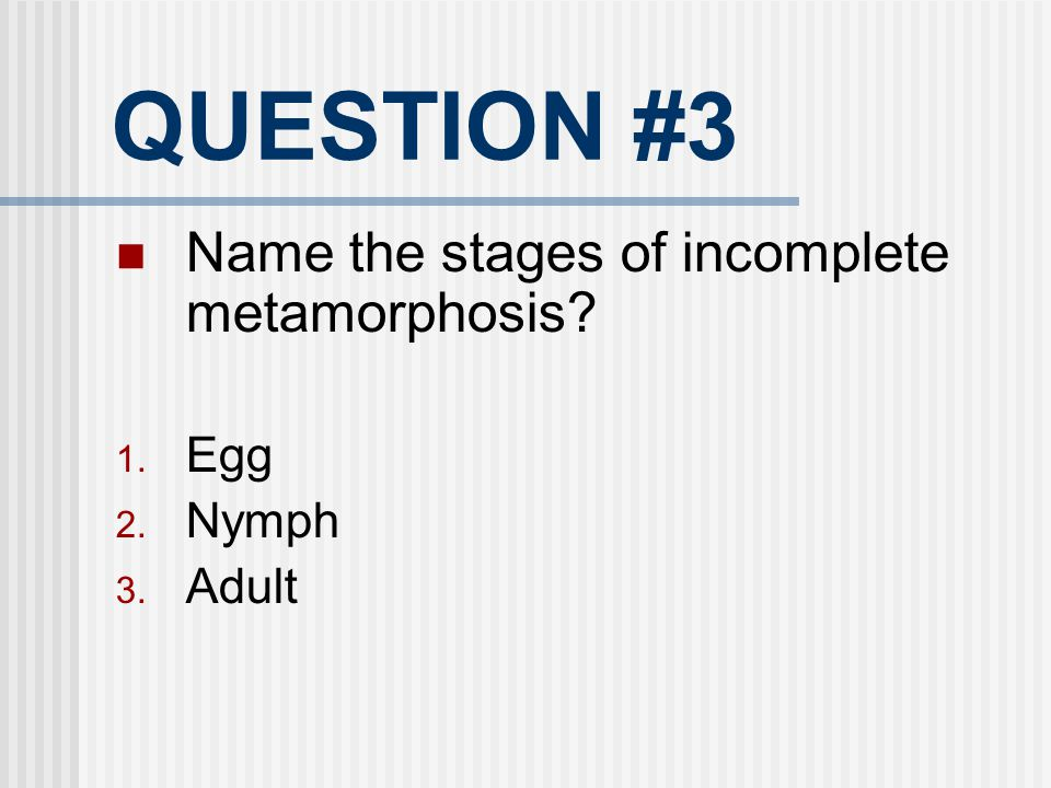 QUESTION #3 Name the stages of incomplete metamorphosis Egg Nymph
