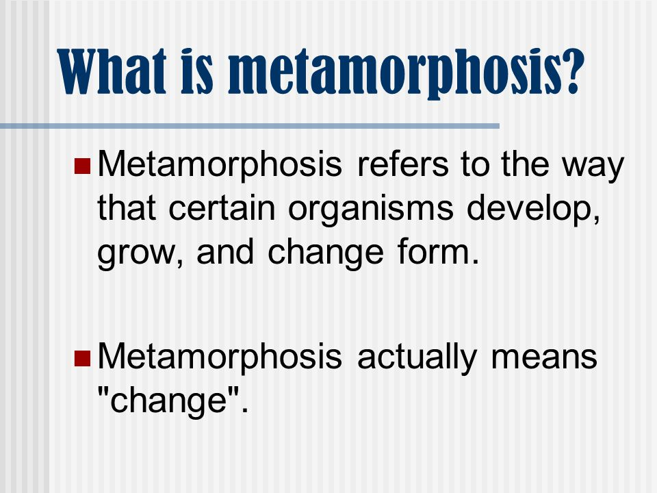 What is metamorphosis Metamorphosis refers to the way that certain organisms develop, grow, and change form.