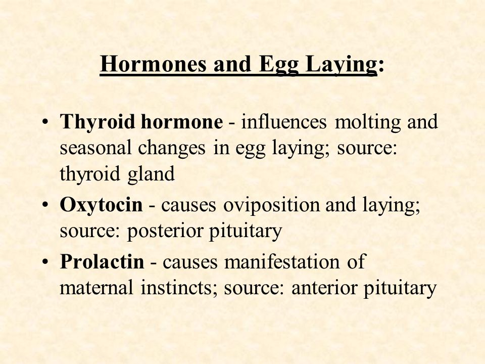 Hormones and Egg Laying: