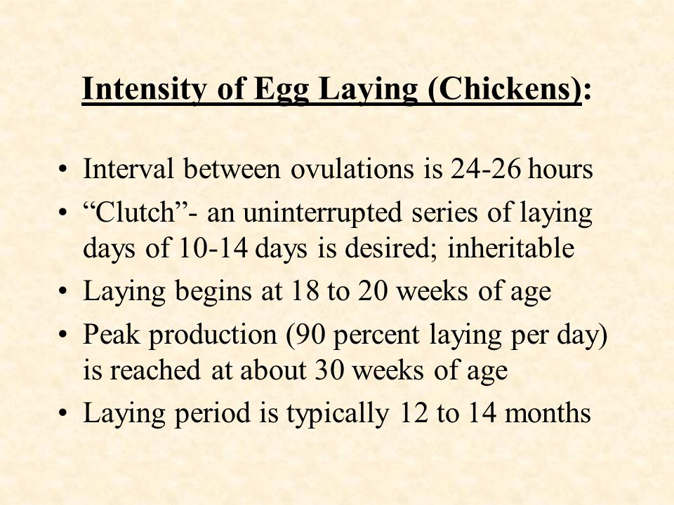 Intensity of Egg Laying (Chickens):