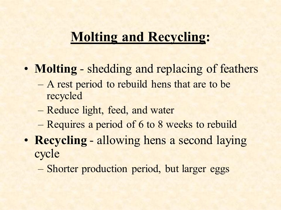 Molting and Recycling: