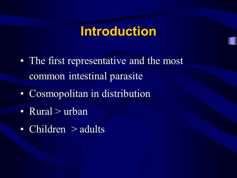 Introduction The first representative and the most common intestinal parasite. Cosmopolitan in distribution.