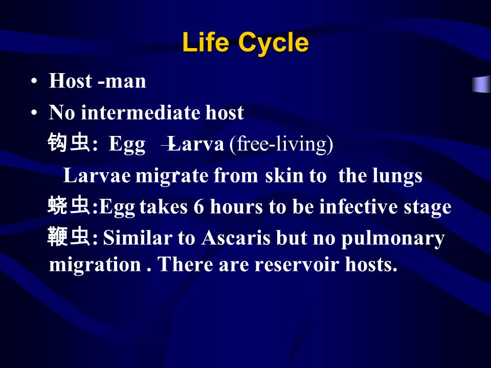 Life Cycle Host -man No intermediate host 钩虫: Egg Larva (free-living)