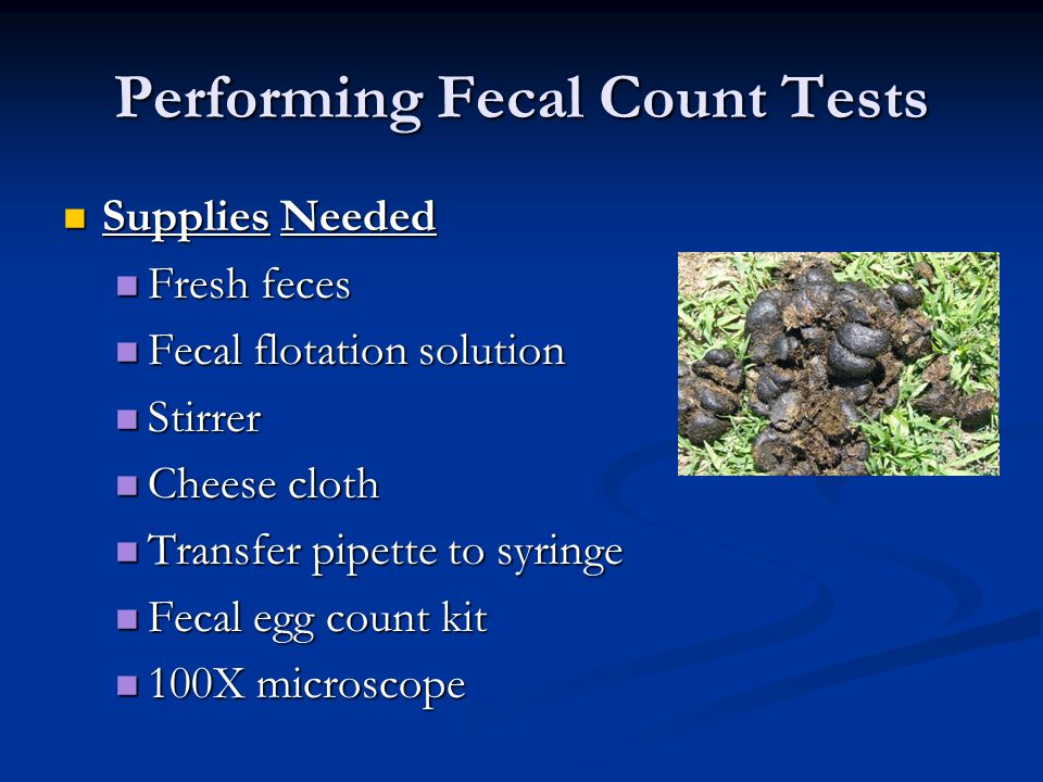 Performing Fecal Count Tests