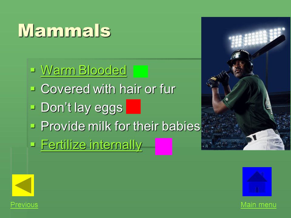 Mammals Warm Blooded Covered with hair or fur Don't lay eggs